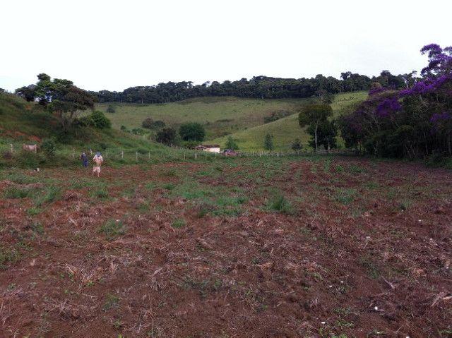 Vende-se Fazenda em Rio Espera-MG - Foto 7