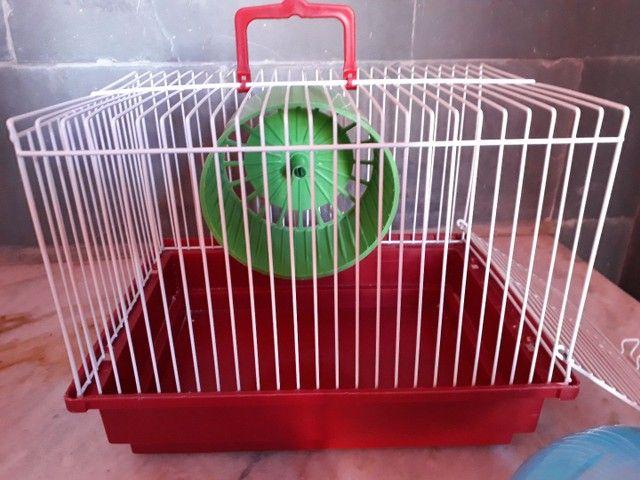Kit Hamster Completo - Gaiola, brinquedos e mais! - Foto 4
