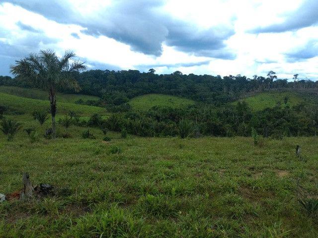 Fazenda (Porteira fechada) no Apuí-AM - Foto 5