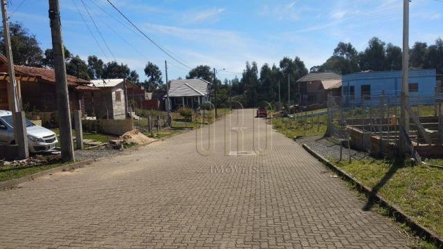 Terreno em canela, bairro vista do vale, 250 m² - Foto 5