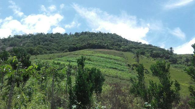 Sítio dos sonhos seu pedaço do Paraíso com 7 hectares por 150 mil - Foto 16