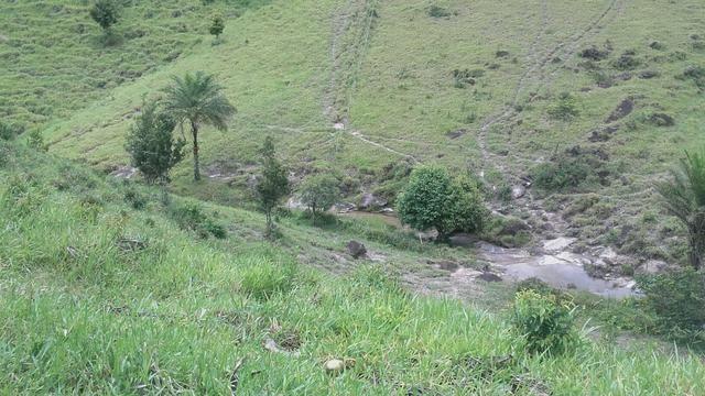 Linda Fazenda em Joaquim Gomes 60 hectares apenas 750 mil - Foto 17