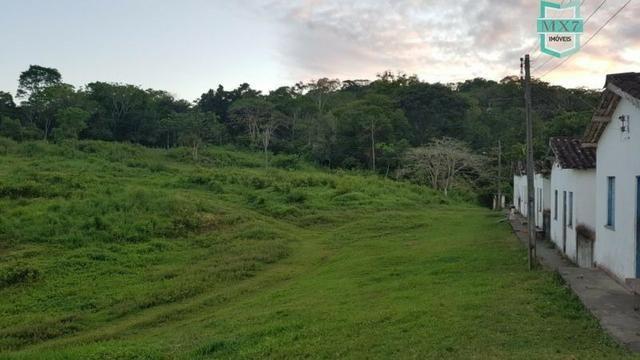 Barro Preto-BA. Fazenda de 167 Hectares. produção de cacau - Foto 4