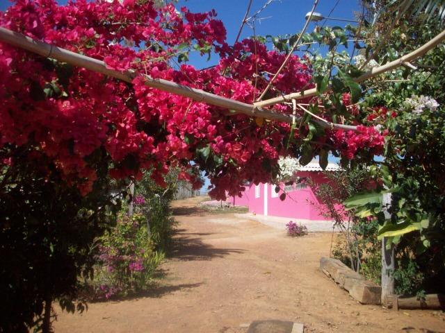 Cód. 5284 - Sítio em Cocalzinho de Goiás - Foto 16