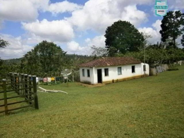 Fazenda de 278 hectares, entre Ubaitaba e Travessão - Foto 10