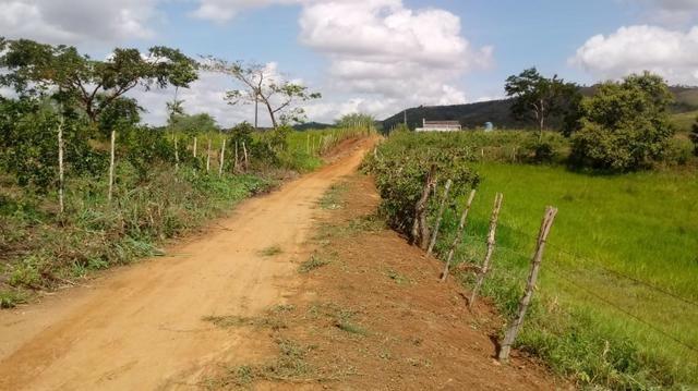 Propriedade de 7 hectares, escriturada, em Dois Leões-PE! - Foto 14