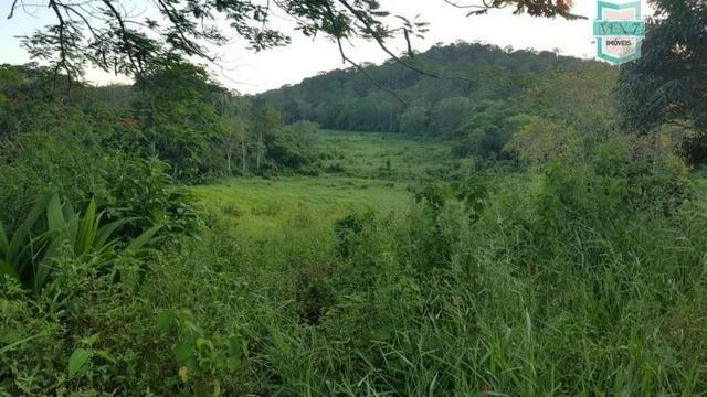 Barro Preto-BA. Fazenda de 167 Hectares. produção de cacau - Foto 15