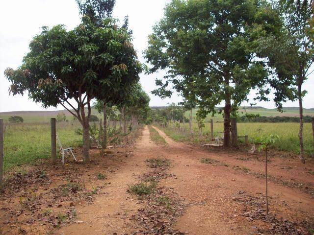 Cód. 5284 - Sítio em Cocalzinho de Goiás - Foto 6
