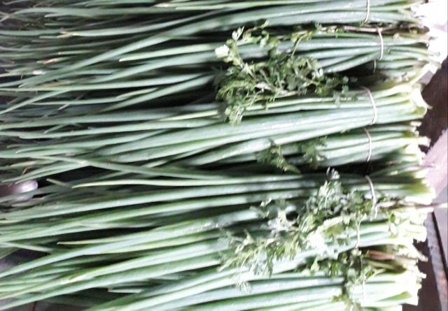 Vamos aproveitar cheiro verde de boa qualidade 1 real unidade - Foto 4