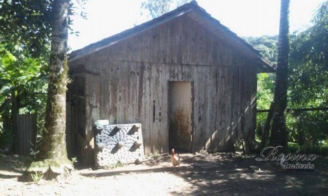 Chácara com 63535 m² - Morretes/PR - Foto 13