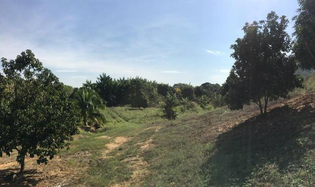 Terreno / Lote em Serra - Foto 4