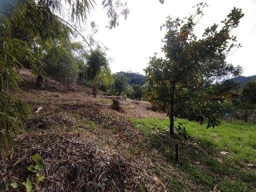 Terreno à venda em Vargem grande, Teresópolis cod:TE0036 - Foto 12