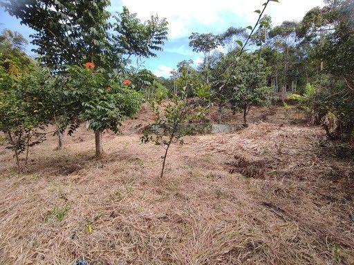 Terreno à venda em Vargem grande, Teresópolis cod:TE0036 - Foto 10