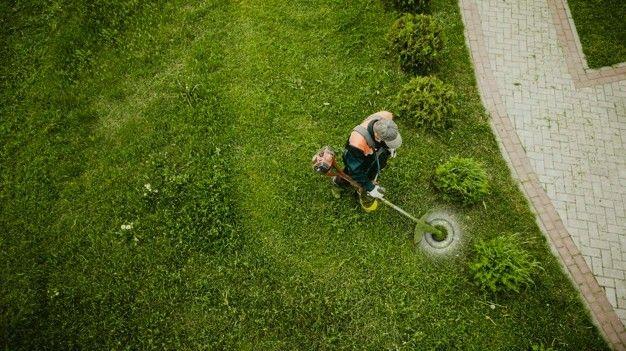 Roçagem de Terreno - Serviço de Roçadeira - Foto 2
