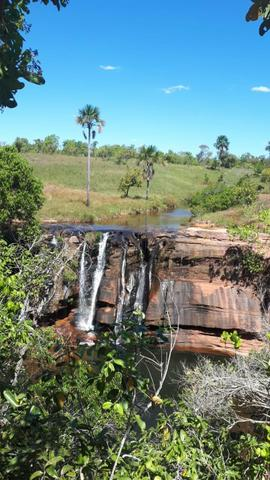 Muito barata 2.652 hectares - Foto 3