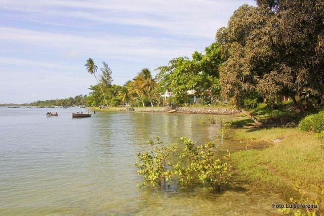 Terreno na ilha de Catu de Berlinque a partir de 7.000,00 - Foto 12