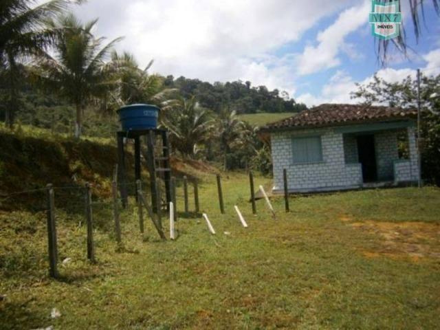 Fazenda de 278 hectares, entre Ubaitaba e Travessão - Foto 11