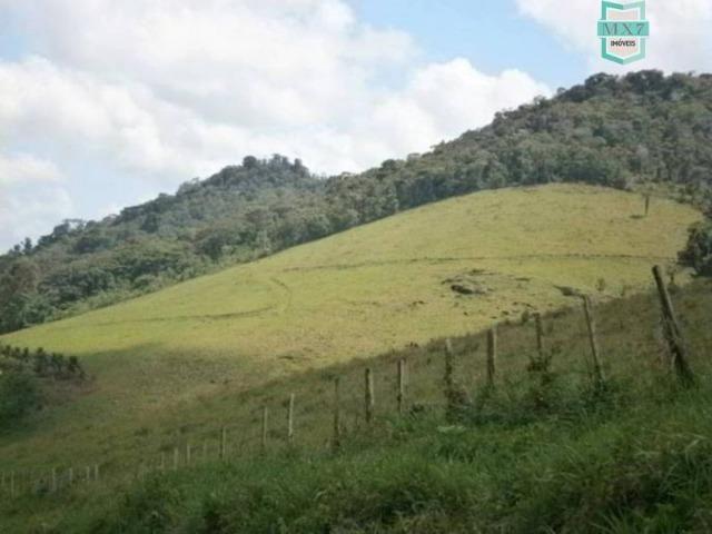 Fazenda de 278 hectares, entre Ubaitaba e Travessão - Foto 13