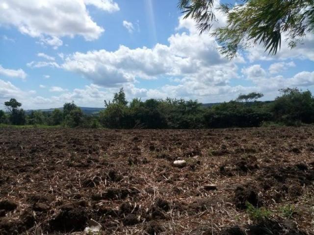 Fazenda para venda em paudalho, guadalajara - Foto 13