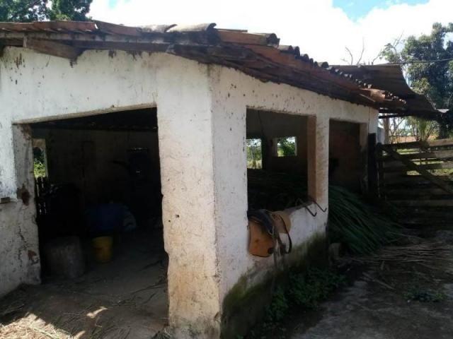 Fazenda para venda em paudalho, guadalajara - Foto 16