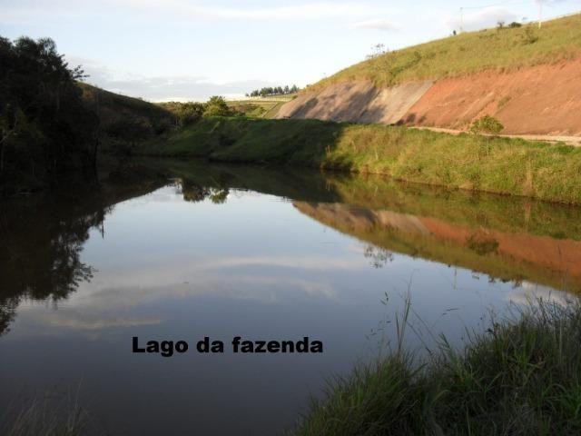 Fazenda com tudo (Casas, lagos, heliporto etc) - Foto 2