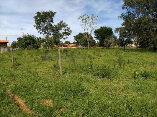 Sítio à venda com 3 dormitórios em Ribeirão do bagre, Felixlândia cod:672822 - Foto 3