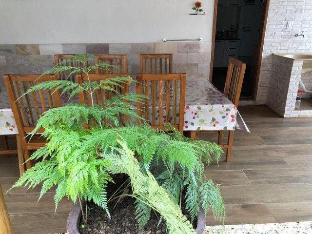 Linda casa de Campo mobiliada em Mesquita MG - Foto 18