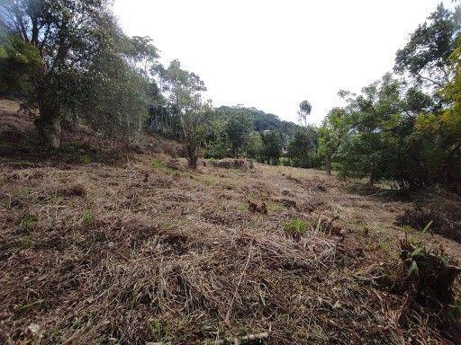 Terreno à venda em Vargem grande, Teresópolis cod:TE0036 - Foto 4