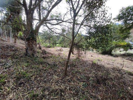 Terreno à venda em Vargem grande, Teresópolis cod:TE0036 - Foto 6