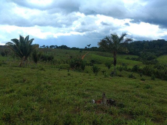 Fazenda (Porteira fechada) no Apuí-AM - Foto 9