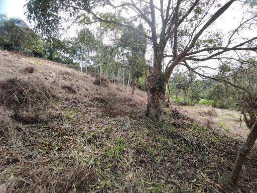Terreno à venda em Vargem grande, Teresópolis cod:TE0036 - Foto 2