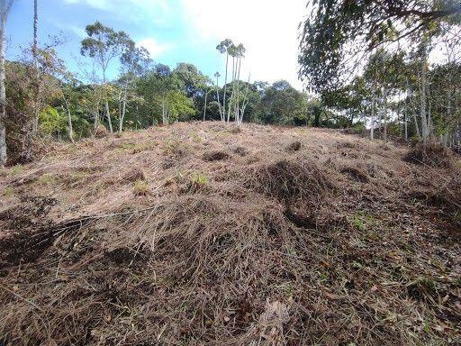 Terreno à venda em Vargem grande, Teresópolis cod:TE0036 - Foto 3