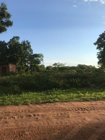 Terreno comdominio brisas do campo 5km do belvedere - Foto 4