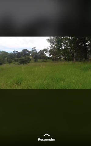 Fazenda próximo Araguari 72 Alqueires - Foto 2