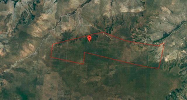 Gleba 01 com 3.866 hectares - Cocos (SP)