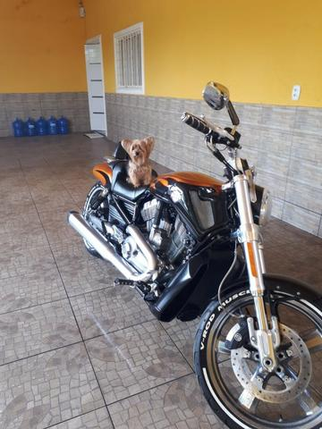 Harley Davidson V-Rod Muscle 1250 cc - Foto 17
