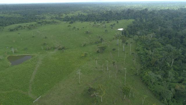 Fazenda Próxima de Rio Branco - Foto 11