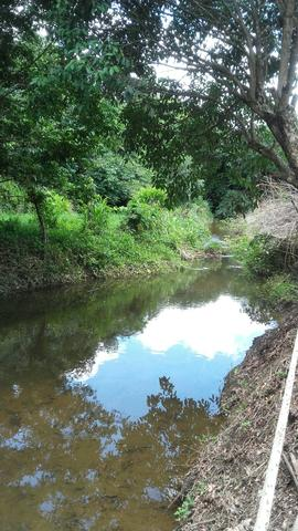 Sítio dos sonhos seu pedaço do Paraíso com 7 hectares por 150 mil - Foto 7