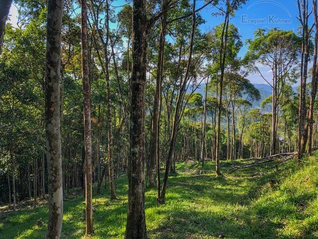 Lindo Sítio com Vista Incrível a 5,3km da BR 282 em Caldas - Foto 9