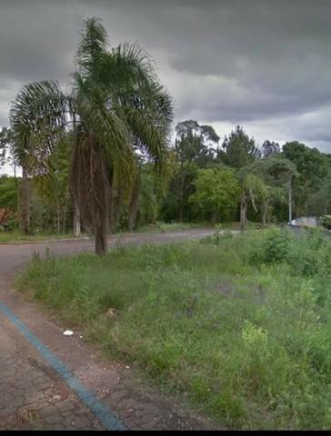 Proximo a rodovia da uva colombo, libera para construção de casas e apartamentos - Foto 5