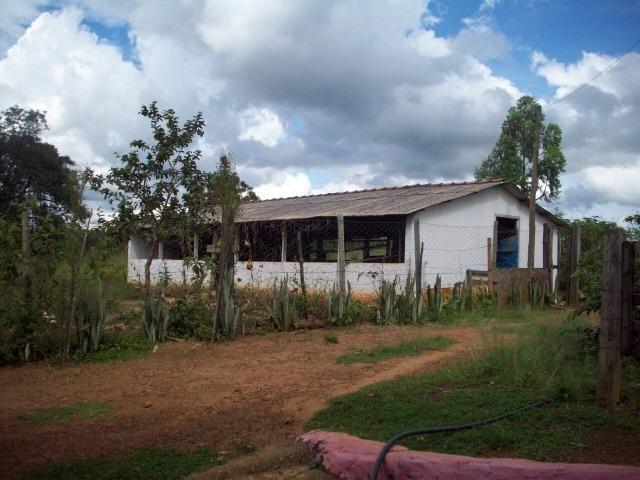 Cód. 5284 - Sítio em Cocalzinho de Goiás - Foto 12