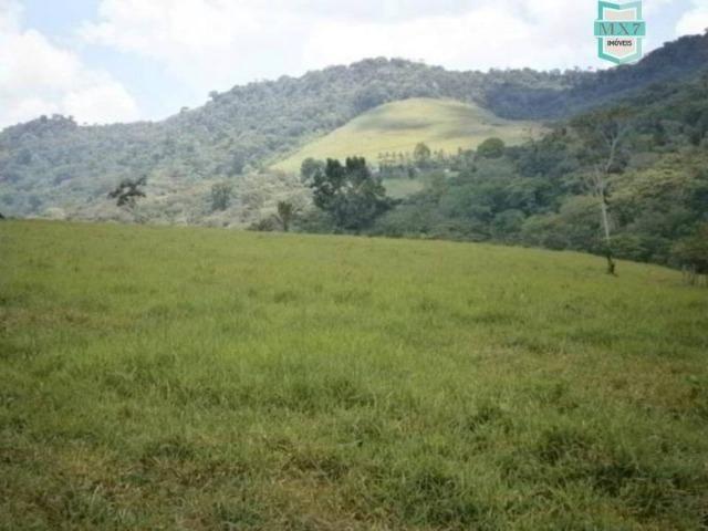 Fazenda de 278 hectares, entre Ubaitaba e Travessão - Foto 15