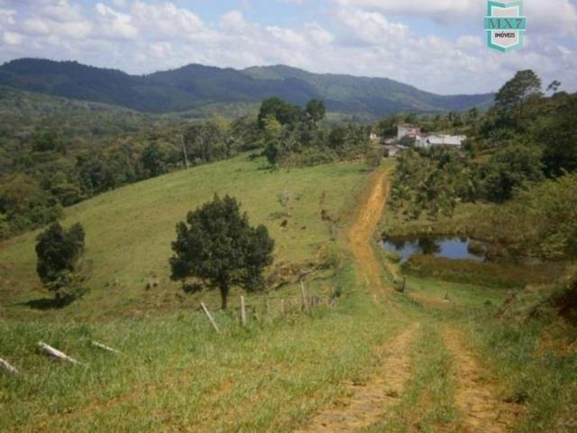 Fazenda de 278 hectares, entre Ubaitaba e Travessão - Foto 16