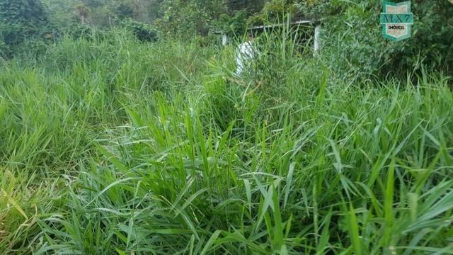 Barro Preto-BA. Fazenda de 167 Hectares. produção de cacau - Foto 14