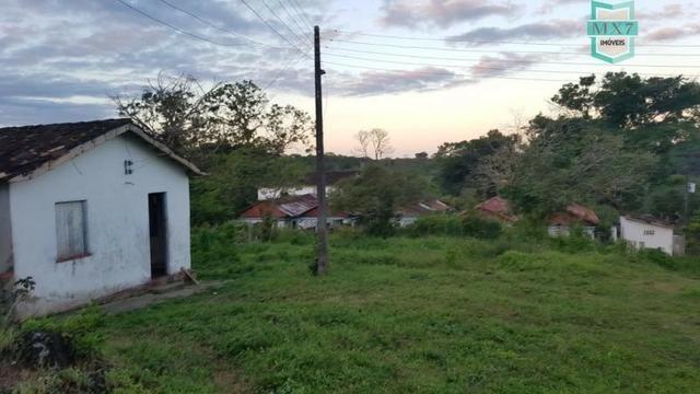 Barro Preto-BA. Fazenda de 167 Hectares. produção de cacau - Foto 5