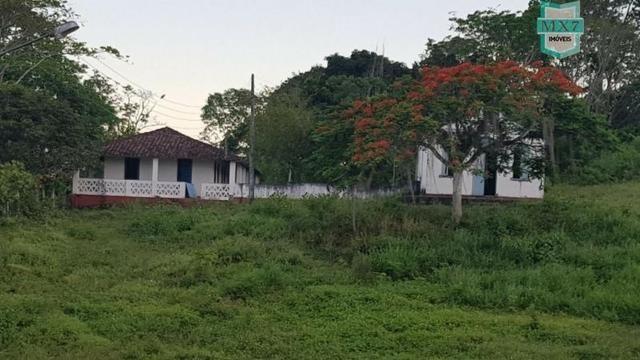 Barro Preto-BA. Fazenda de 167 Hectares. produção de cacau - Foto 9