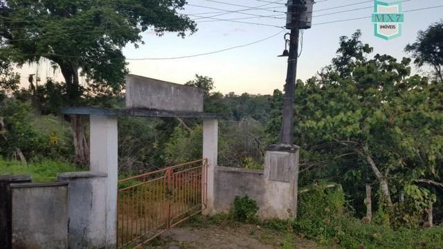 Barro Preto-BA. Fazenda de 167 Hectares. produção de cacau - Foto 11