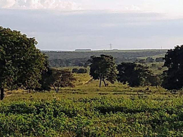 2.253 Há. Alto Garças-MT (Plana ao Lado Lavoura) - Foto 11