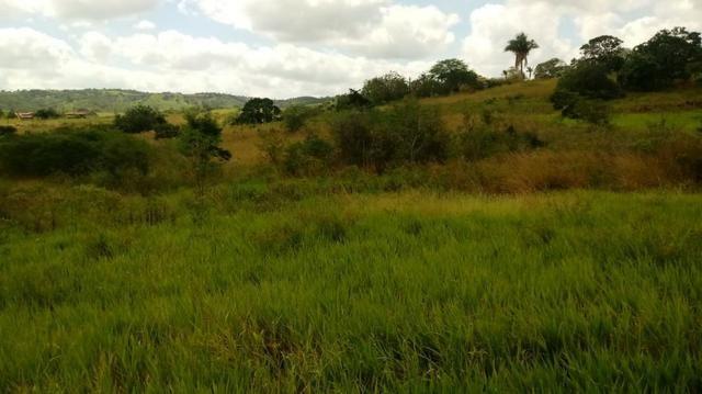 Propriedade de 7 hectares, escriturada, em Dois Leões-PE! - Foto 13