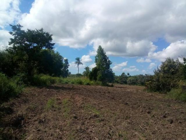 Fazenda para venda em paudalho, guadalajara - Foto 6